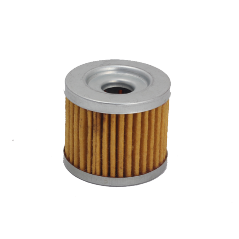 Royal Enfield Old Oil Filter