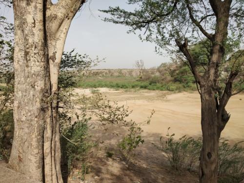 Surajkund Trip 24