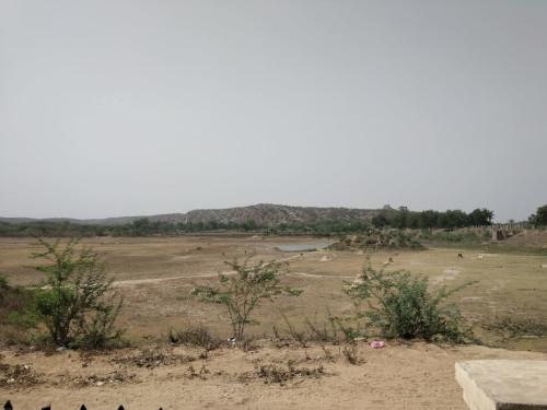 Surajkund Trip 30